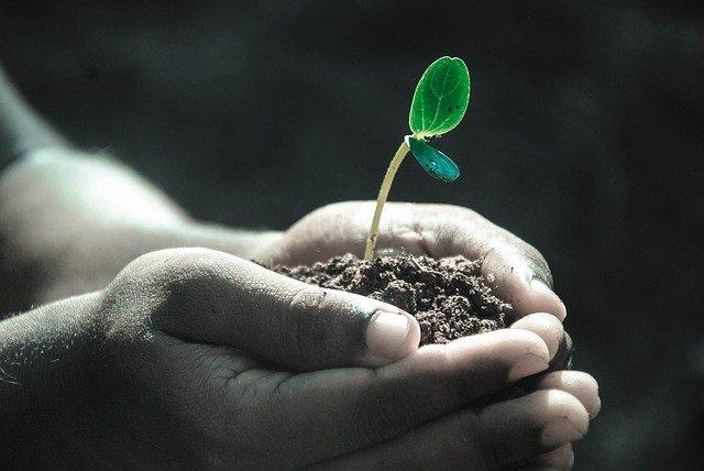 仕事で成長できないのは、環境のせいではない
